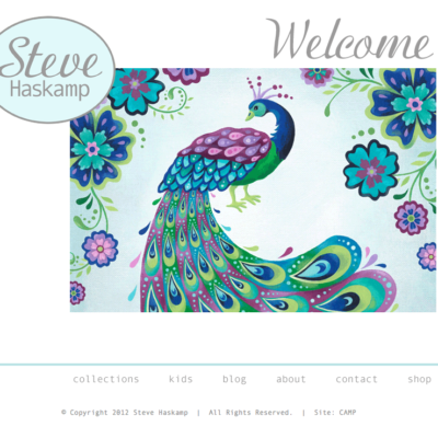 A new website for Illustrator Steve Haskamp